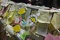 Umbrella Revolution (15406459834).jpg
