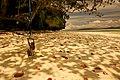 Unnamed Road, Kabuy, Meos Mansar, Kabupaten Raja Ampat, Papua Bar. 98482, Indonesia - panoramio.jpg