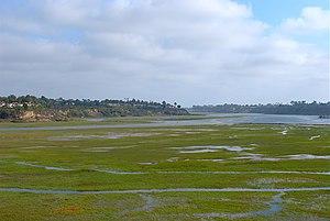 San Diego Creek - San Diego Creek flows into the Upper Newport Bay.