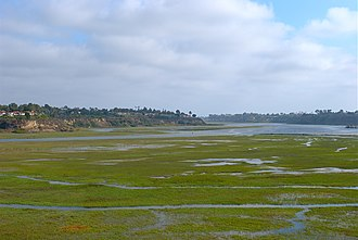 San Diego Creek - San Diego Creek flows into the Upper Newport Bay.