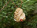Vánoce, ozdoba na stromku, šiška.jpg