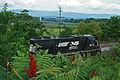 Valley Railroading (3849998103).jpg