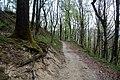 Via degli Dei, Firenzuola, dal Passo della Futa al monte Gazzaro 01.jpg