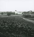 Viby Kirke ca. 1900.jpg