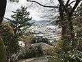 View from Kameyama Park (west).jpg