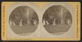 View on Lawn, Glen Iris, Portage, N.Y, by Walker, L. E., 1826-1916.png