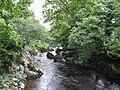 View upstream from the Ganllwyd footbridge - geograph.org.uk - 489899.jpg