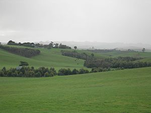 South Gippsland - Farmland near Kilcunda