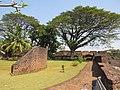 Views from and around Thalasserry fort - Tellicherry fort, Kerala, India (62).jpg