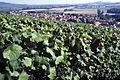 Village de Cumieres (51) hzt 1 Cl.J.Weber (23569082252).jpg