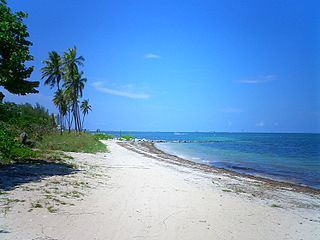Virginia Key Neighborhood of Miami in Miami-Dade County, Florida, United States