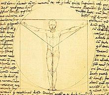 Vitruvian Man Wikipedia