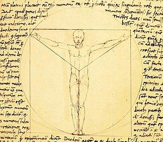 Vitruvian Man - A Vitruvian Man prototype by Giacomo Andrea