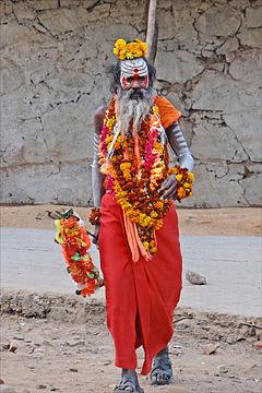 Sadhu portraits - a gallery on Flickr