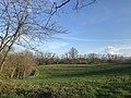 Vue sur les coteaux du Terrefort au dessus de Pamiers (2).jpg