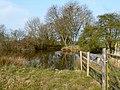 Walcot Village Pond (geograph 3930788).jpg
