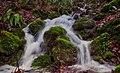 Water Kriens (243451905).jpeg