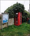 Westrip, Stroud ... all the fashionable boxes have this hairstyle. - Flickr - BazzaDaRambler.jpg