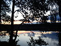 Wielickie Lake, Lubuskie.jpg