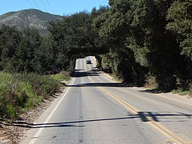 Wildomar tree tunnel 2.jpg