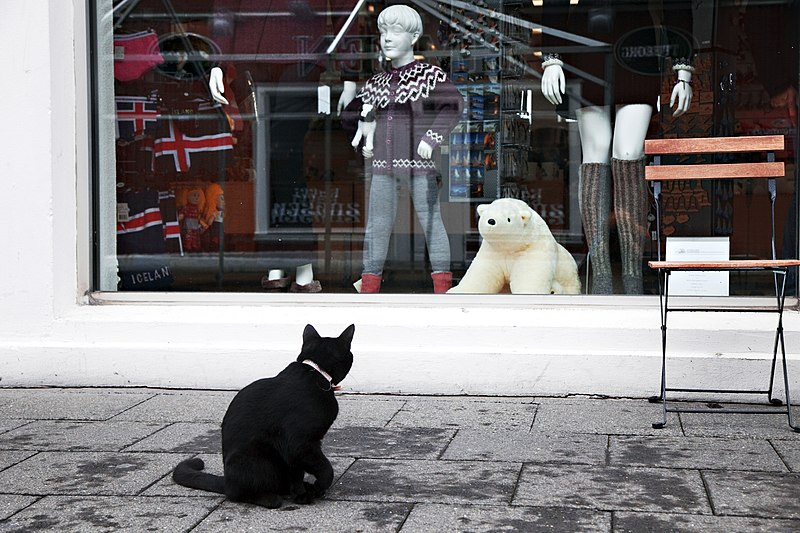 File:Window shopping.jpg
