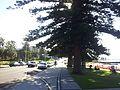 Wollongong NSW 2500, Australia - panoramio (26).jpg