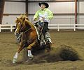 Woman sliding a horse.jpg