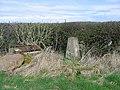Woodbank triangulation pillar - geograph.org.uk - 855699.jpg