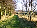 Woods,Quarryford. - geograph.org.uk - 143985.jpg