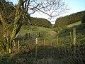 Woods near a spring - geograph.org.uk - 706210.jpg
