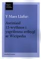 Y Maes Llafur - Aseiniad 12 Wythnos.png