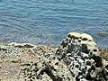 Yeliu Coast 野柳海岸 - panoramio (2).jpg