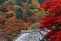 Yoshimine-dera (8255244655).jpg