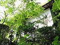 Yusenji (Katsuragi, Nara)2.jpg