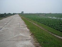 Pianura alluvionale - Wikipedia