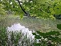 Əmbil gölü 1.jpg