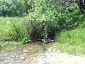 Бабин Дол (поток) 01.jpg