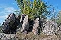 Богуславль (регіональний ландшафтний парк) 01.jpg