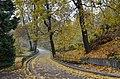 Ботанічний сад імені академіка Олександра Фоміна Київ 011.jpg