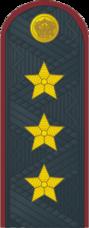 Генерал полковник ФСИН №.png