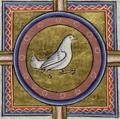 Голубь в центре креста. Миниатюра из Абердинского бестиария.png