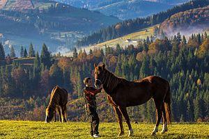 National Parks of Ukraine - Image: Дитячі Будні