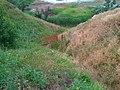 Заброшенный песчаный карьер (1940-50е годы) - panoramio (2).jpg