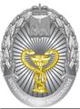Заслуженный работник здравоохранения Псковской области.png