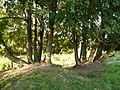За Никульским - panoramio.jpg