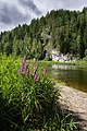 Камень Пленичный, река Чусовая 0160 0127.jpg
