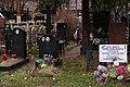 Красные цветы на могиле Л.Б. Хавкиной.jpg