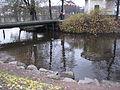 Лопухинский сад. У мостика..JPG