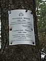 Мемориальное кладбище жертв политических репрессий Макариха. Котлас.JPG