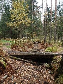 Мост через канаву в Ржевском лесопарке.JPG